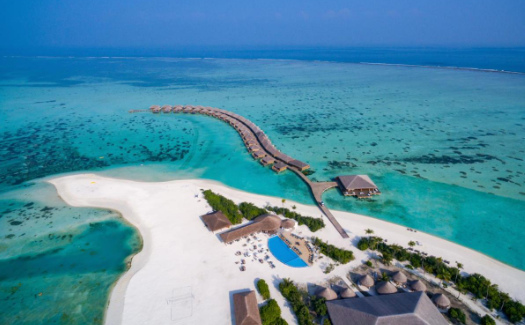 Aerial shot of Cocoon Island